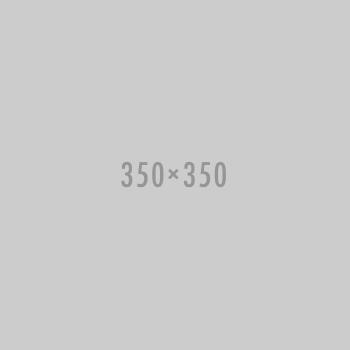 Missing 350x350